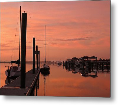 Metal Print featuring the photograph Just Rosy by Laura Ragland