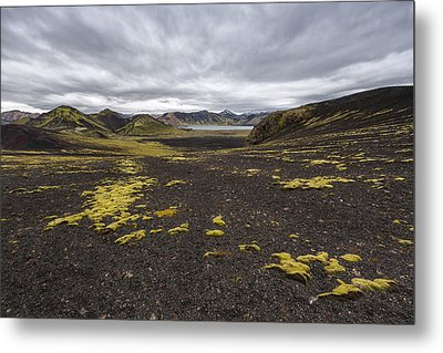 Coming And Going Metal Print by Jon Glaser