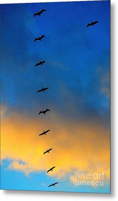 Coming Home 2 Metal Print by Theresa Ramos-DuVon