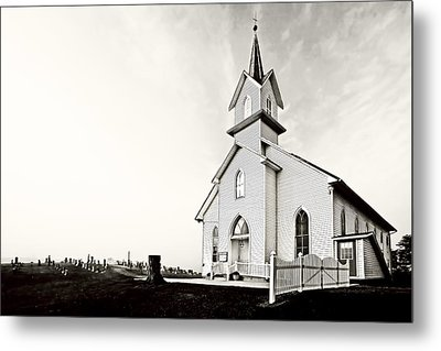 Coming Out Of The Mist Metal Print by Marcia Colelli