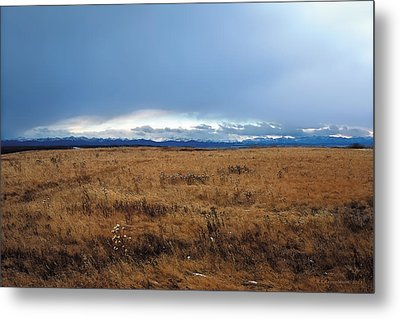 Coming Snow 2 Metal Print by Terry Reynoldson