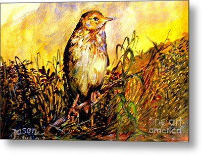 Common Pipit Metal Print