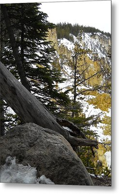 Metal Print featuring the photograph Composition At Lower Falls by Michele Myers