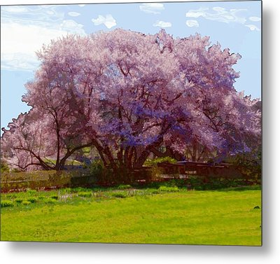 Concord Spring Metal Print