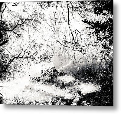 Confusion Of The Senses Metal Print