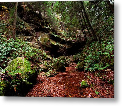 Metal Print featuring the photograph Conkles Hollow Gorge by Haren Images- Kriss Haren
