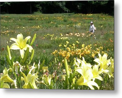 Consider The Lilies Of The Field Metal Print by Jean Hall