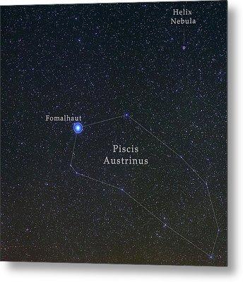 Constellation Piscis Austrinus Metal Print by Babak Tafreshi