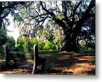 Metal Print featuring the photograph New Orleans Contemplating Solitude by Michael Hoard