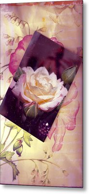 Continuation From Print To Photo Of White Rose Metal Print by Anne-Elizabeth Whiteway