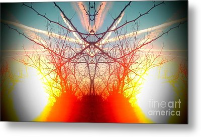 Contrails And Hedge Metal Print by Karen Newell