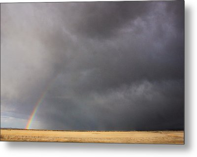 Metal Print featuring the photograph Contrasts by Jon Emery
