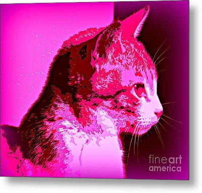 Metal Print featuring the photograph Cool Cat by Clare Bevan