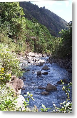 Metal Print featuring the photograph Cool Stream by Sheila Byers