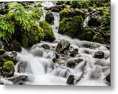 Cool Waters Metal Print by Suzanne Luft