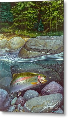Coolwaters Rainbow Trout Metal Print