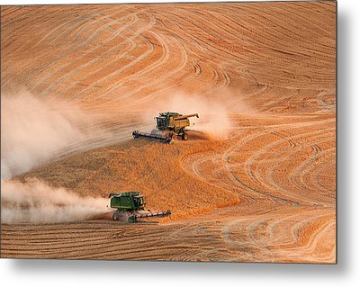 Cooperation Metal Print by Mary Jo Allen
