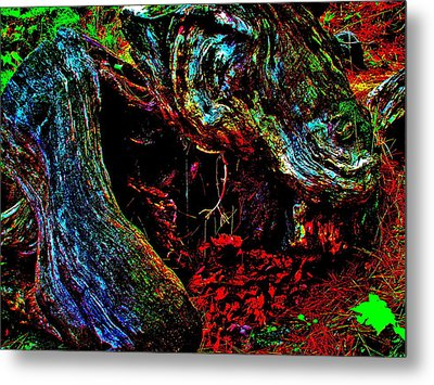 Coos Canyon 229 Metal Print