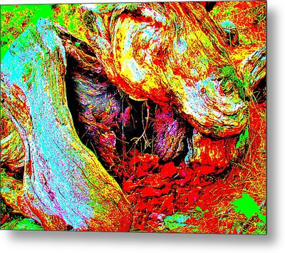 Coos Canyon 230 Metal Print