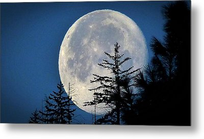 Metal Print featuring the photograph Copernicus View by Julia Hassett