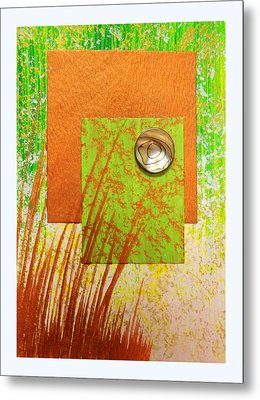 Copper Sunset Metal Print by Darren Robinson