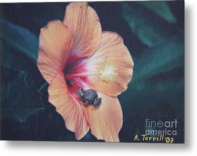 Metal Print featuring the photograph Coqui  by The Art of Alice Terrill