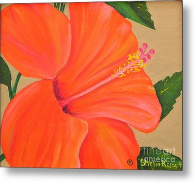 Coral Delight - Hibiscus Flower Metal Print