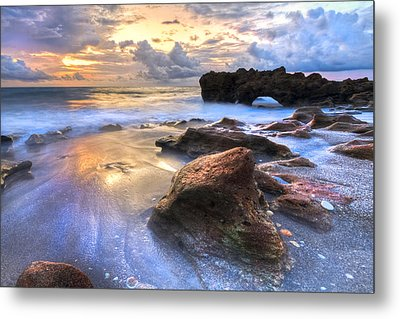 Coral Garden Metal Print by Debra and Dave Vanderlaan