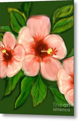 Coral Hibiscus  Metal Print by Christine Fournier