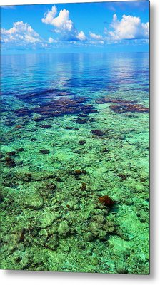 Coral Reef Near The Island At Peaceful Day. Maldives Metal Print by Jenny Rainbow