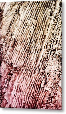 Coral Rock Close Up Metal Print by Photography  By Sai
