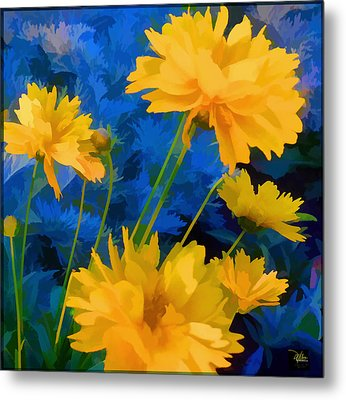 Coreopsis - Yellow And Blue Metal Print