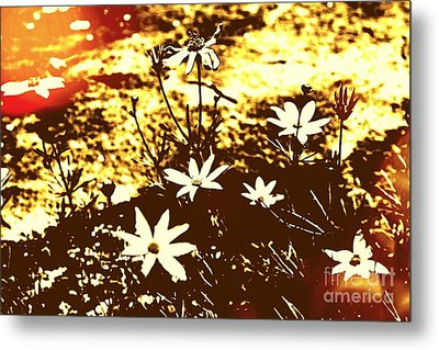 Metal Print featuring the photograph Coriopsis by Denise Tomasura