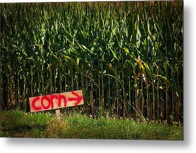 Corn Metal Print by Karol Livote