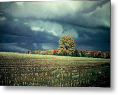 Cornfield On Argentine Road Metal Print by James Welch