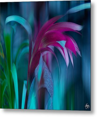 Cornflower Dreams Mindscape Metal Print