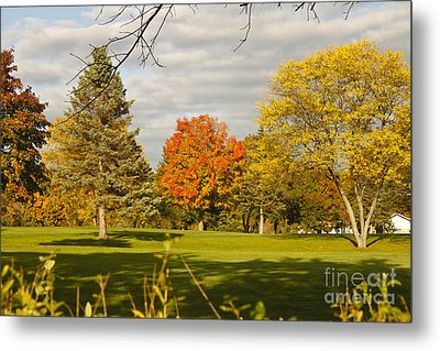 Corning Fall Foliage 5 Metal Print