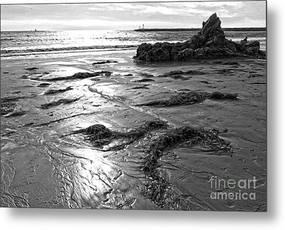 Corona Del Mar Coast - Black And Awhite Metal Print by Gregory Dyer
