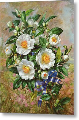 Coronation Camelia From The Golden Jubilee Series Metal Print by Albert Williams