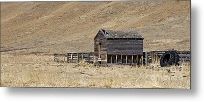 Corral Metal Print by Dee Cresswell
