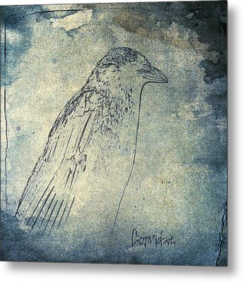 Faded Corvidae Metal Print by Gothicrow Images