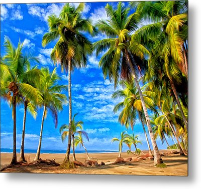 Costa Rican Paradise Metal Print by Michael Pickett