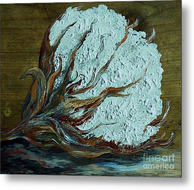 Cotton Boll On Wood Metal Print