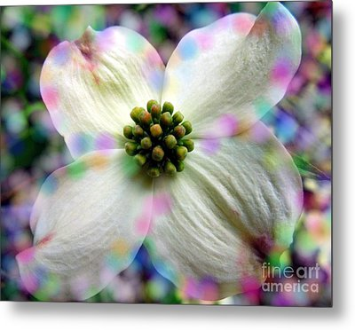 Cotton Candy Flower Metal Print by Renee Trenholm
