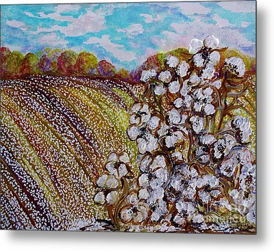 Cotton Fields In Autumn Metal Print by Eloise Schneider