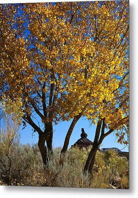 Cottonwood And Nipple Butte-v Metal Print