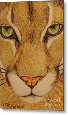 Cougar Metal Print by Christy Saunders Church