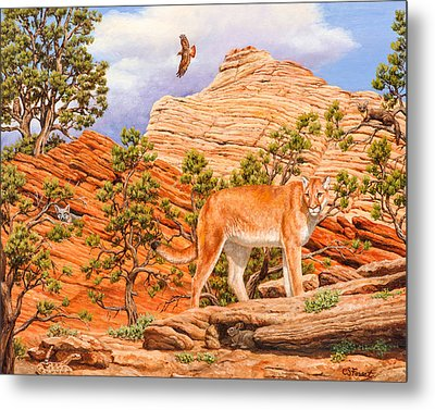 Cougar - Don't Move Metal Print by Crista Forest