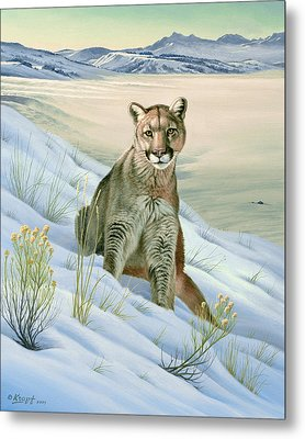 'cougar In Snow' Metal Print