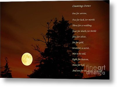Counting Crows - Old Superstitious Nursery Rhyme Metal Print by Barbara Griffin